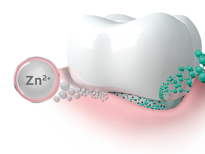 Antibacterial efficacy of zinc
